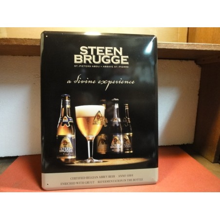 TOLE  STEEN BRUGGE  DIVINE EXPERIENCE  40X30